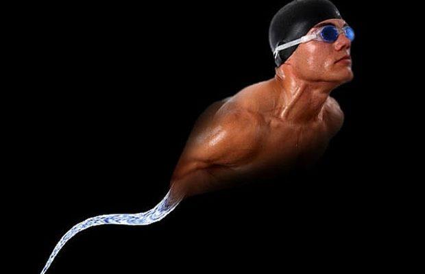 sperm_swimmer